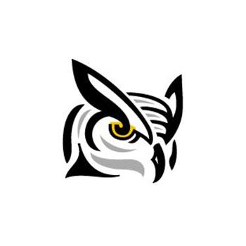 sofionik design group