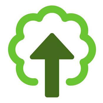 treetop interactive